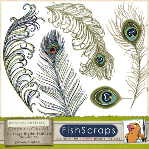 Peacock Feathers ClipArt